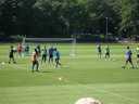 HSV Training